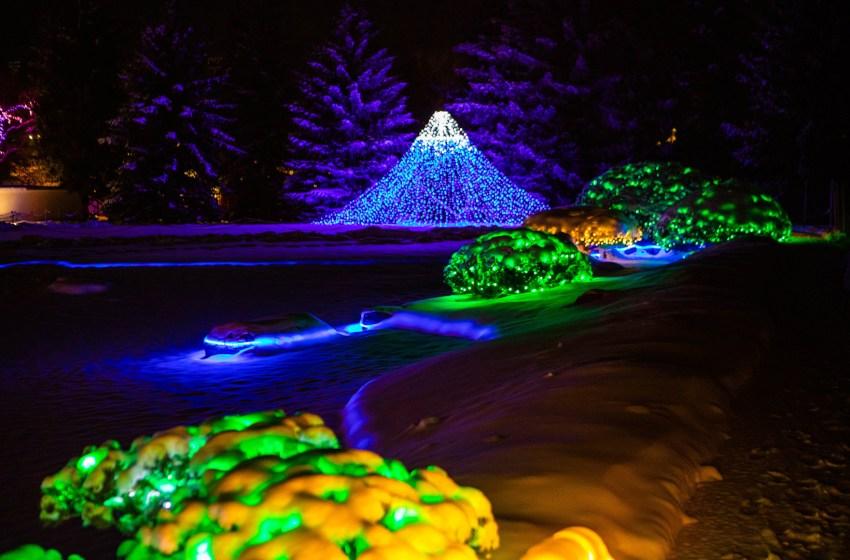Nikka Yuko Japanese Gardens releases numbers for Winter Lights Festivals
