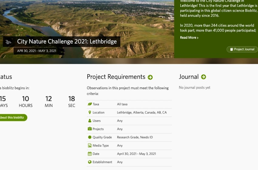 Biodiversity to be documented for City Nature Challenge