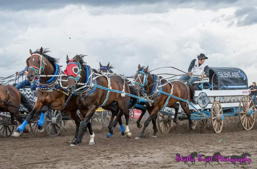 High River set to host Battle of the Foothills chuckwagon racing