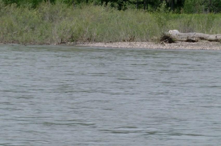 Fatal incident on Oldman River