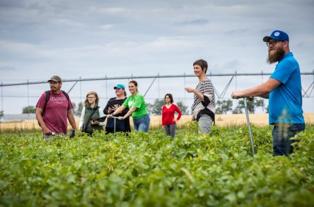 Lethbridge College receives irrigation research funding