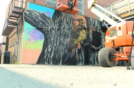 Lethbridge artist completes first art mural as part of pilot project
