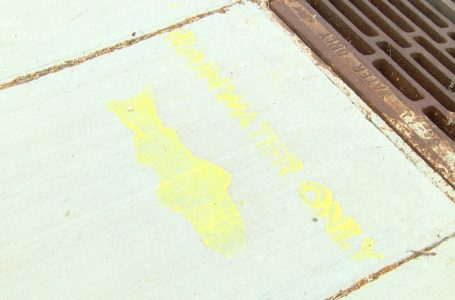 Yellow Fish Road reminding people of water entering city's storm sewer