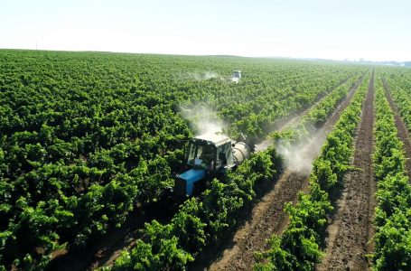 Lethbridge reacts to agricultural disaster announcement by Rocky View County
