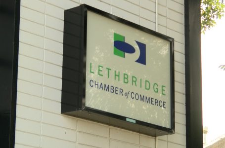 Lethbridge Chamber surveying businesses about vaccine passport