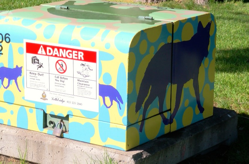 Electrical boxes in Galt Gardens get a makeover from local artists