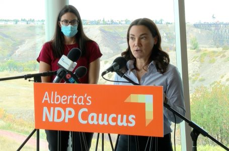 NDP says doctor shortage requires action from UCP