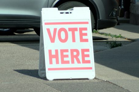 Unofficial results for 2021 Lethbridge municipal election
